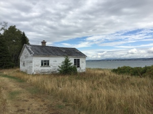 q island hermit